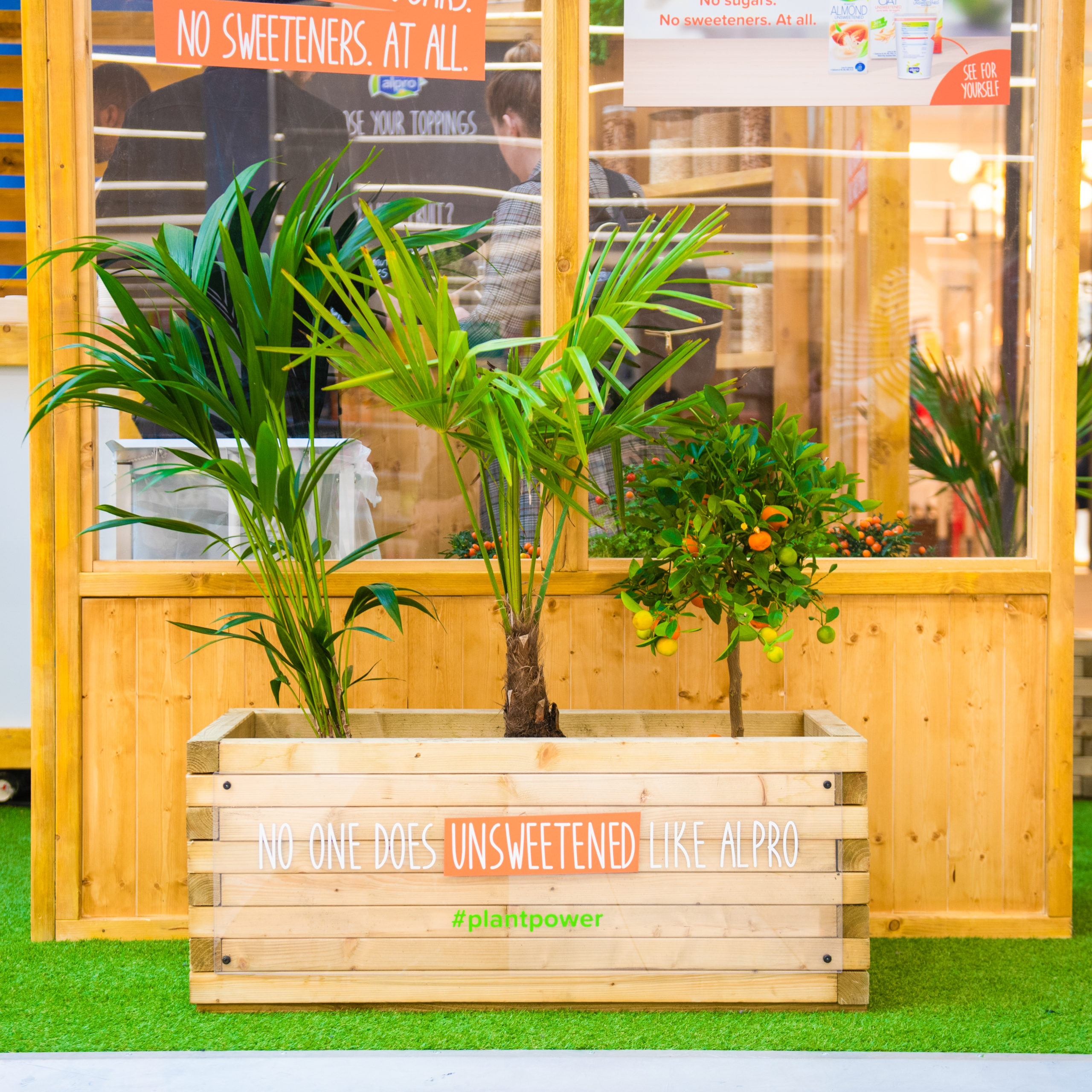 Plant in front of Alpro stand